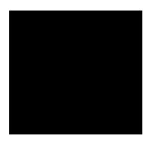 sephora_logo_transparent